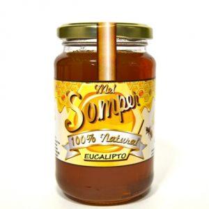miel eucalipto miel somper