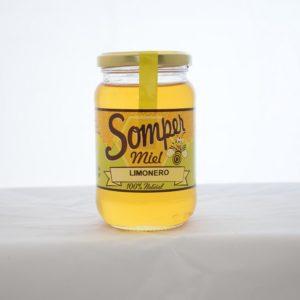 mile limonero Miel somper